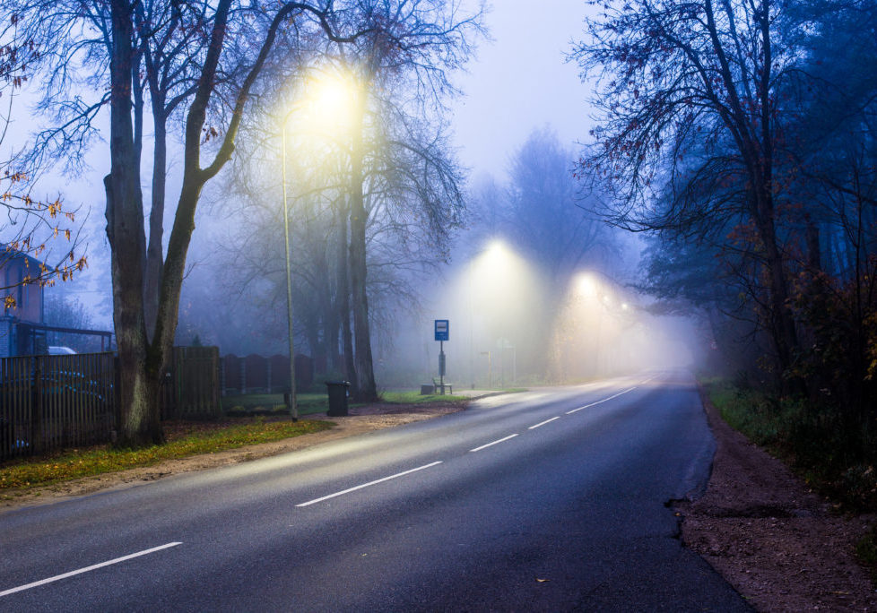 Foggy morning and lights. An autumn forest landscape. A view from the asphalt country road. Latvia